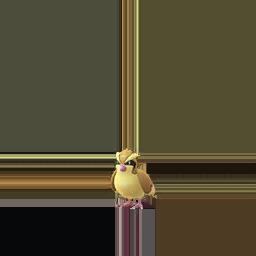 Comprar Pokémon Pidgey