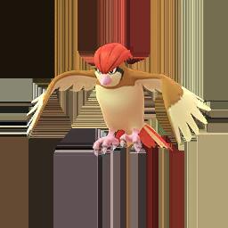 Comprar Pokémon Pidgeotto