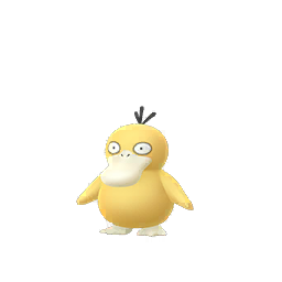 Buy Pokémon Psyduck