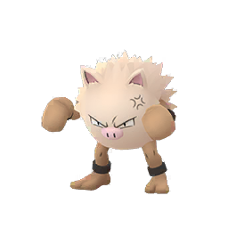 Buy Pokémon Primeape