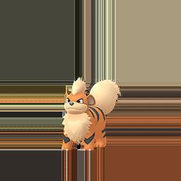 Buy Pokémon Growlithe