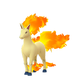 Buy Pokémon Rapidash