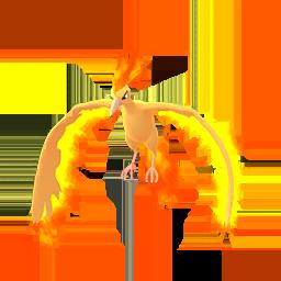 Buy Pokémon Moltres