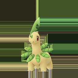 Comprar Pokémon Bayleef